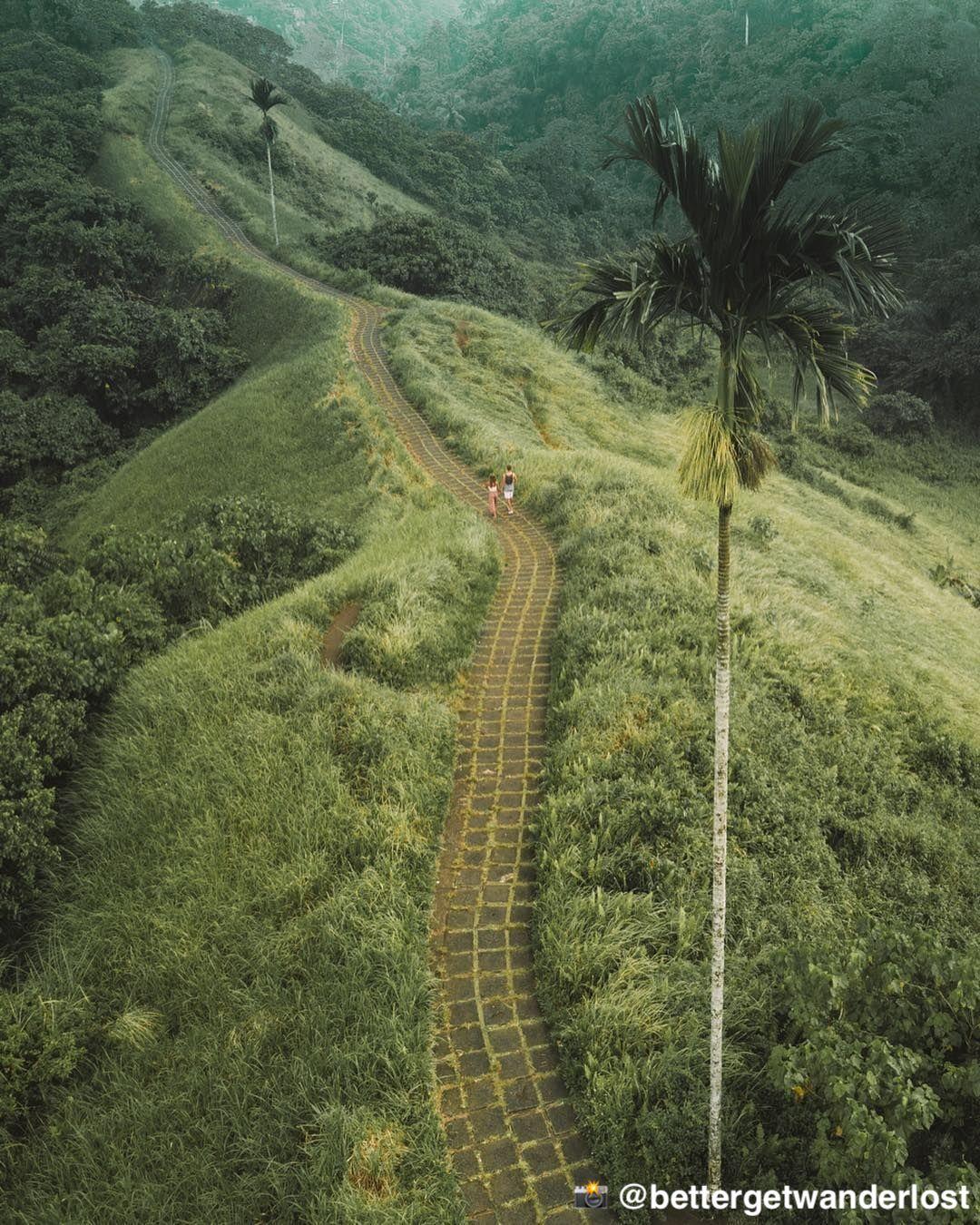 Objek wisata terbaik di dekat Bebek Bengil Ubud