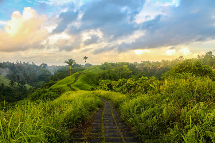 How You Can Spend a Great Holiday in Ubud Bali (Part 2)