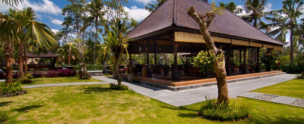 Padi Restaurant, Favorite Pool with Rice Field View in Ubud